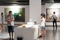 达观美术馆开馆展:中国·岳阳当代艺术邀请展举行