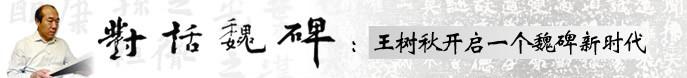 著名书法家王树秋做客天津美术网访谈