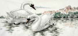 天鹅之梦——著名画家马明作品欣赏