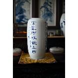 韩征尘青花冬瓜瓶:苏东坡《春晓》