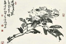 尹沧海教授笔下的牡丹:笔墨纵横恣肆 墨彩淋漓