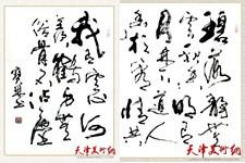 谭宝琳书法作品欣赏:潇洒健畅 风神飘逸