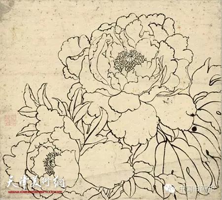 国画牡丹就知道个啦`工笔牡丹白描构图时需要注意哪些关注当下的图式