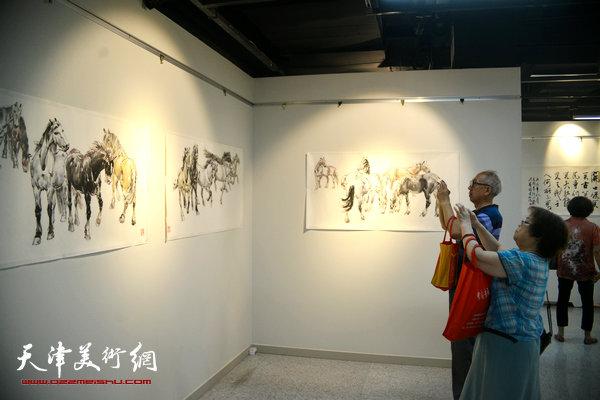 """""""马踏清风入梦来—孙克维国画精品展""""现场。"""