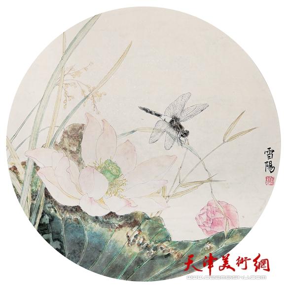 庄雪阳作品《凉花如梦立蜻蜓》