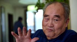 视频:著名书法艺术家孙伯翔:魏碑就是威武的将军