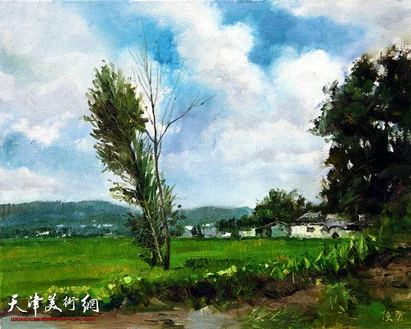 油画《云南之白云》杨俊甫39x31cm2017.4