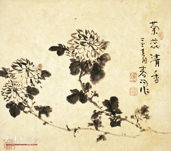霍春阳作品:菊蕊清香  47cmx47cm 2009年
