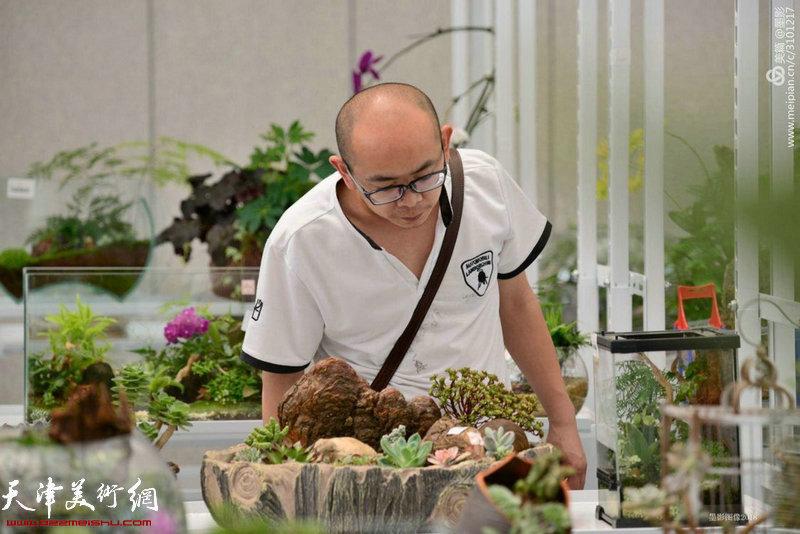 阚传好在观察植物的生长情况。