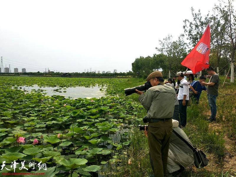天津城市画派走进东丽采风活动来到东丽湖自然艺苑区