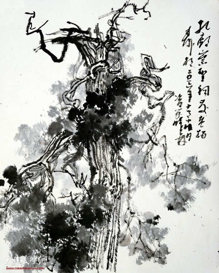 刘曦林作品:孔庙古柏之一  41.8厘米×33.5厘米  2016年