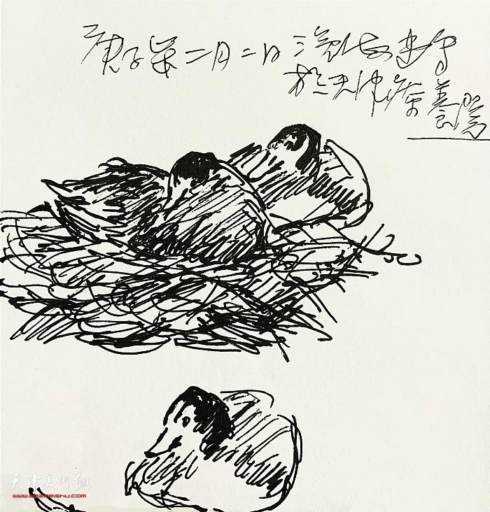 尹沧海新作:《植物速写》