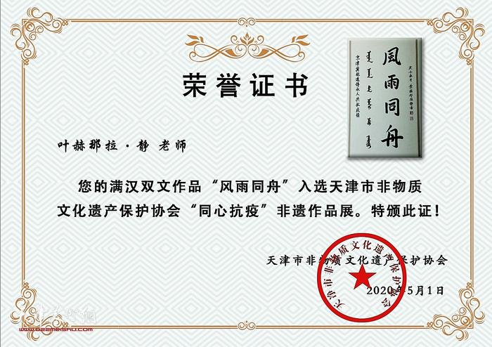 天津市非物质文化遗产保护协会向振海颁发荣誉证书。